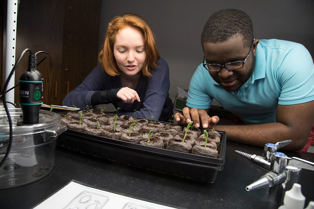 Photograph of Baltimore School for the Arts students growing plants for science class